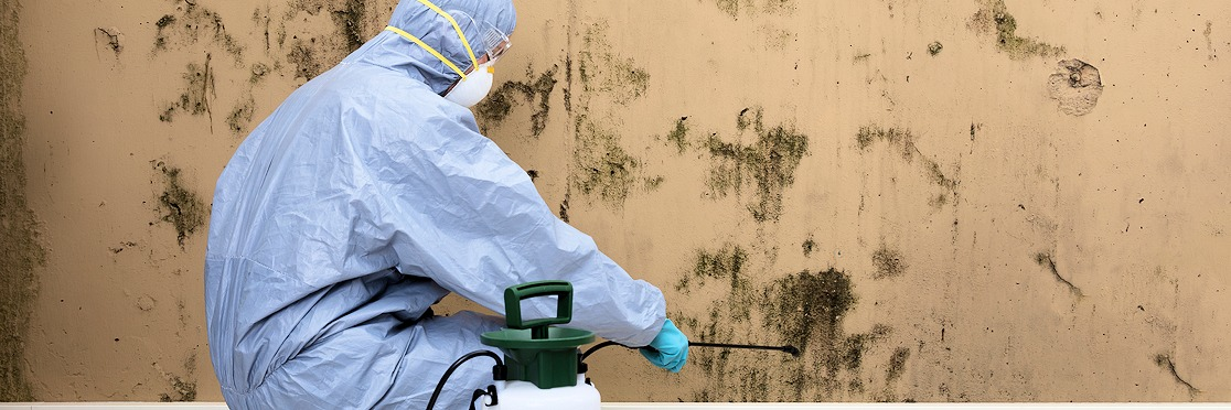 Man in hazmat suite spraying mold